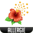 Allergie.png